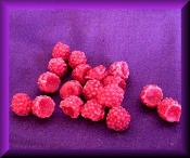 Wax Mini Raspberries