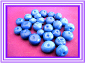 Wax Small Blueberries